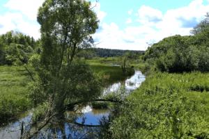 Разработка проекта обводнения выработанного торфяного месторождения «Драковское» на территории национального парка «Угра»