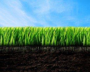 Повышение плодородия почв в России