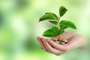 Ваш вклад в улучшение экологической ситуации